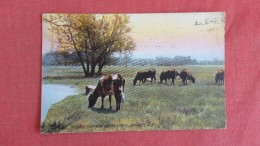 - Rotograph   Wisconsin> Janesville   Pastoral View Near Spring Brook  =ref  2188 - Janesville
