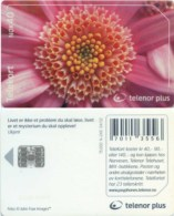Telefonkarte Norwegen - Blume , Flower - N-240  04/02 - Norwegen