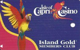 Isle Of Capri Casino Boonville, MO BLANK Slot Card (Location Printed On Back) - Casino Cards