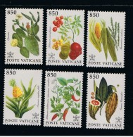 1992 - VATICANO - S13E.1 - SET OF 6 STAMPS ** - Unused Stamps