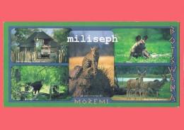 BOTSWANA - Moremi - Multivues Animaux -    (4216) - Botswana