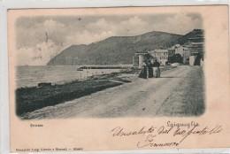 LAIGUEGLIA-ENTRATA-VG 1900-BUONA CONSERVAZIONE-VEDI OFFERTA SPECIALE IN SPESE DI SPEDIZIONE-2 SCAN - Italien