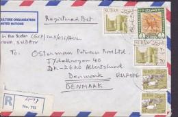Sudan AGRICULTURE ORGANIZATION United Nations Registered 1988 Cover Brief 1£ Kamelpostreiter Camel Post Rider (2 Scans) - Sudan (1954-...)