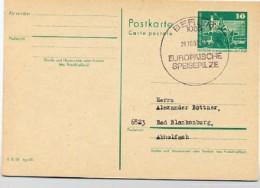 SPEISEPILZE Berlin 1980 Auf  DDR  Postkarte P 79 - Pflanzen Und Botanik