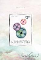 Micronesia 2013 - Faune Marine, Coquillages - BF Neuf // Mnh - Micronésie