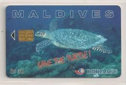 Télécarte - Maldives - Tortue - Save The Turtle - - Maldives