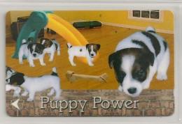Télécarte - Singapour - Chiens - Puppy Power - - Singapour