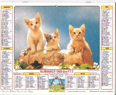 CALENDRIER - ALMANACH 1988 DES PTT - Départements 75-92-93-94 - Chiens-chats - Big : 1981-90