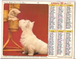CALENDRIER - ALMANACH 1981 Des PTT  - Départements 75-92-93-94 - CHATS/CHIEN - Big : 1981-90