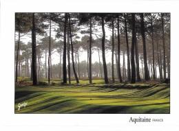 GOLF SPORT   PAYSAGES DES LANDES  GOLF DE LA COTE D'ARGENT DEPART TROU N° 17  MOLIETS  EDIT. GUELFI - Golf