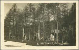 Ala Di Stura - Madonna Di Lourdes - Fp Vg1922 - Non Classés