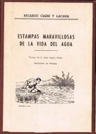 17697. Libro ESTAMPAS MARAVILLOSAS DE LA VIDA DEL AGUA 1963 - Bellas Artes, Ocio