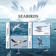 Mayreau Grenadines Of St. Vincent-2015-Birds Sea Birds - St.Vincent E Grenadine