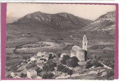 20.- CAP CORSE - PATRIMONIO .- Vue Générale Et Les Vignobles - Francia