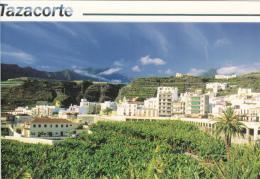 Tazacorte Isla De La Palma Postcard 2scans - La Palma