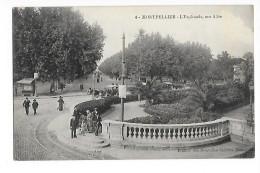 MONTPELLIER  (cpa 34)   L'Esplanade - Une Allée - - Montpellier