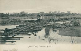 TT DIVERS / Pitch Lake / - Trinidad