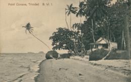 TT DIVERS / Point Cumana / - Trinidad