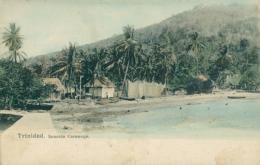 TT DIVERS / Seaside Carenage / - Trinidad