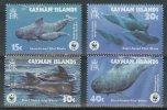 Ncw332s WWF FAUNA ZEEZOOGDIEREN WALVIS WHALE GRINDWAL SEA MAMMALS BALEINES MARINE LIFE CAYMAN ISLANDS 2003 PF/MNH - Unused Stamps