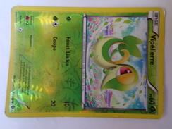 Carte Pokemon 2012 Vipélierre PV60 11/149 - Pokemon