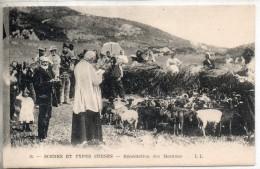20. Types Corses. La Bénédiction Des Moutons - France