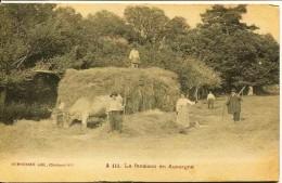 12543 - Puy De Dôme -   FENAISON EN AUVERGNE  ( Métier- Agriculture) édit: Dumousset , Clermont-Fd -  Circulée En 1912 - Francia