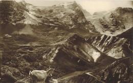 ISERE Voyagé Grenoble : Véritable Carte Photo Bromure Sans Bordure : Panorama De La Meije - Autres Communes