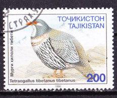Tagikistan 1995-Palombella -Usato - Tagikistan