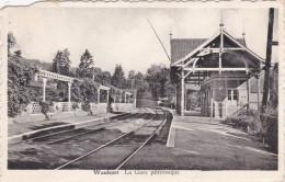 Hastiere Waulsort La Gare Ferroviaire Pittoresque Railway Station Station Statie Beschadigd Treinstation Trein Train