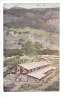 14366 - Lipton View On Ceylan Tea Estate - Sri Lanka (Ceylon)
