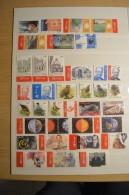 Année Complète 2004 - Timbres + Blocs + Carnet - Belgium Years 2004 Full - Belgique