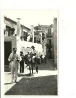 Taormina-Messina -Sicilia-(Costumi E Mestieri Siciliani: Venditore Di Latte Su Asino).P.formato.Nuova - Italië
