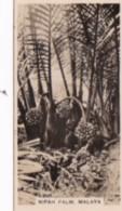 Carreras Vintage Cigarette Card Malayan Industries No 4 Nipah Palm - Cigarrillos