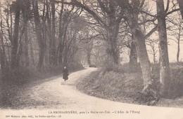 Cp , 85 , LA ROCHE-sur-YON , Environs , LA BROSSARDIÈRE , L'Allée De L'Étang - La Roche Sur Yon