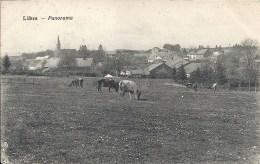 LIBIN : Panorama - Cachet De La Poste 1923 - Libin