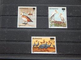 Botswana - 1987 Birds Overprints MNH__(TH-7528) - Botswana (1966-...)