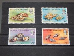 British Virgin Islands - 1974 Shells MNH__(TH-7047) - British Virgin Islands