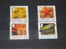 Gibraltar - 1994 Marine Animals MNH__(TH-9815) - Gibraltar