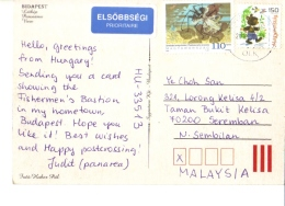 18A : Hungary Thorny Insect, Teddy Bear Stamp On Budapest Postcard - Hongarije