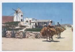 CARBONERAS --recto Vesro -C40 - Almería