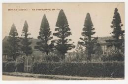 61 - Monnai           Le Presbytère, Les Ifs - Frankrijk