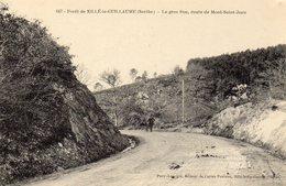 CPA SILLE LE GUILLAUME 72 Le Gros Roc, Route De Mont-Saint-Jean - Sille Le Guillaume