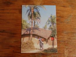 Village Life Bangladesh 1994 - Bangladesh