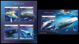 SOLOMON Isl. 2015 - Whales. M/S + S/S - Walvissen