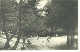 49823    Chatelaillon   Plage Croquets Dans Le Parc Municipal - Châtelaillon-Plage