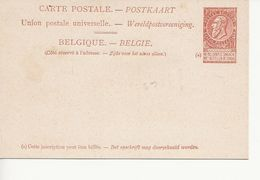 Paquebots De L'Etat Belge-Ligne Ostende -Douvres-Léopold II-10 C. Fine Barbe. - Entiers Postaux