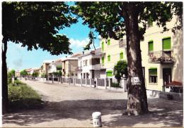 CARTOLINA  CARPI - NUOVI QUARTIERI      VIAGGIATA 1960 - Carpi