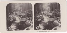 Stereo-Foto (photo Stéréo) 101 Riesengebirge -Partie An Der Lomnitz- - Ohne Zuordnung