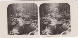 Stereo-Foto (photo Stéréo) 101 Riesengebirge -Partie An Der Lomnitz- - Photographica